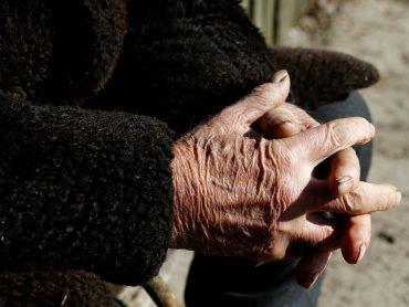 """""""Covid-19. Confinamento prolongado dos idosos? Especialista diz que """"viver isolado propicia outro tipo de riscos"""""""